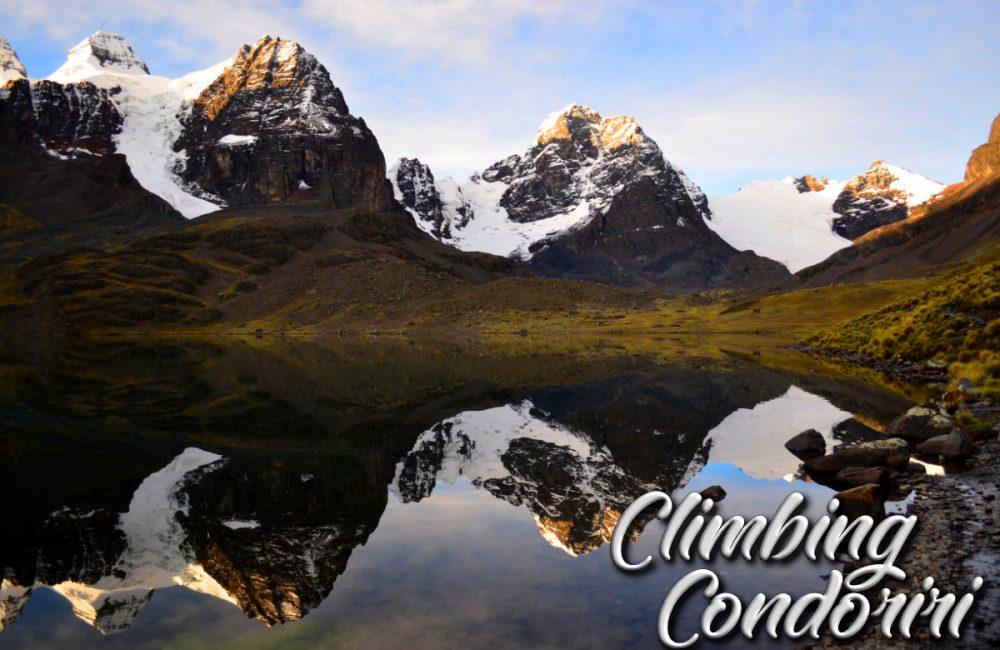Condor_1